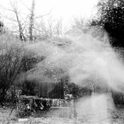 aude_francoise_fotografy_analogue_long_exposure_lost_bird_2