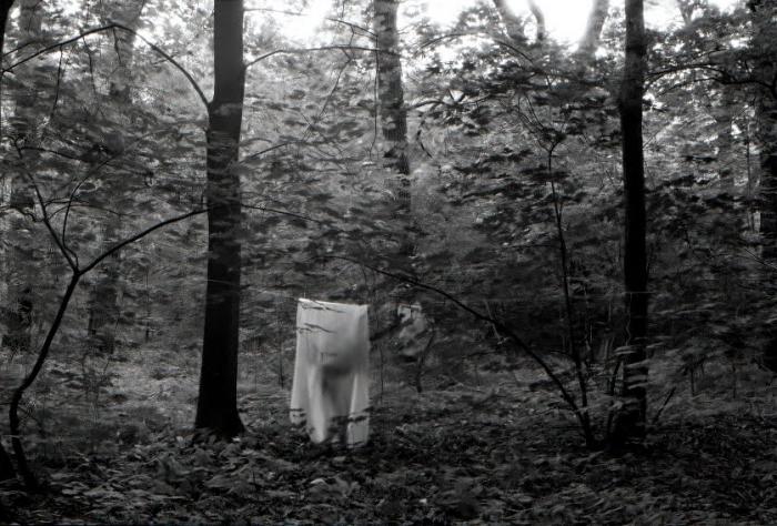 aude_francoise_brent_sqar_fotografy_analogue_long_exposure_forest_berlin_11