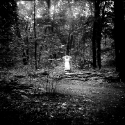 dead_tree_aude_francoise_brent_sqar_37