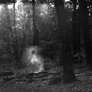 dead_tree_aude_francoise_brent_sqar_41