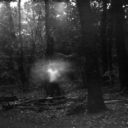 dead_tree_aude_francoise_brent_sqar_46