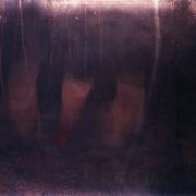 erased_auderrose_brentsqar_pinehole_color_photography_experiments_01