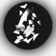 auderrose_fantastic_animal_photogram_silver_print_01