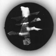 auderrose_fantastic_animal_photogram_silver_print_05