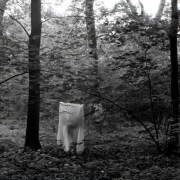 aude_francoise_brent_sqar_fotografy_analogue_long_exposure_forest_berlin_11
