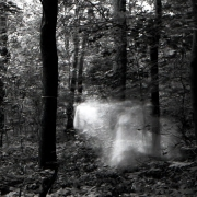 aude_francoise_brent_sqar_fotografy_analogue_long_exposure_forest_berlin_21