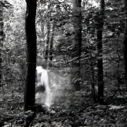 aude_francoise_brent_sqar_fotografy_analogue_long_exposure_forest_berlin_7