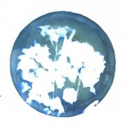 greenplantcircle_02
