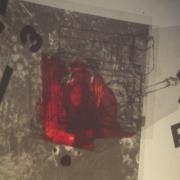 auderrose_lesmachinessolitaires_kassel_live_2014_06