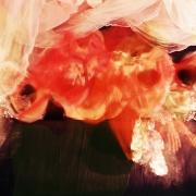 auderrose_brent_sqar-rouge_sang-0011_post